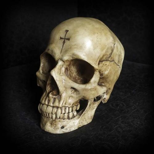 Crâne décoratif, crâne de...