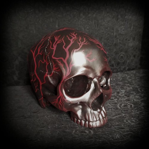 Crâne décoratif, crâne...