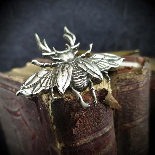 Broche scarabée aux ailes...